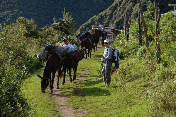 Arrieros que acompañan la expedición a Choquequirao